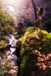 Sunbathing in Eden II